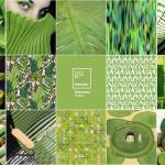 İç Mimari renk trendleri 2017 – Greenery-15-034